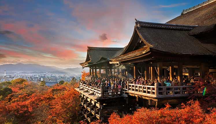 auひかり 京都